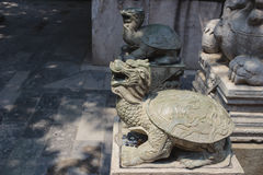 Statue of turtle in Lama temple, Beijing, China Royalty Free Stock Photos