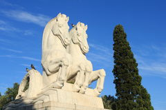 Statue of two horses. In Lisbon, Portugal royalty free stock image