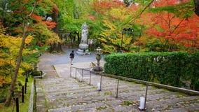 Statue und Herbst Guanyin arbeiten bei Eikando, Kyoto im Garten Stockbilder