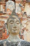 Statue von Buddha Stockfotos
