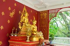 Statue von Buddha in Chiang Mai Thailand lizenzfreie stockfotos