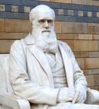 Statue von Charles Darwin lizenzfreies stockfoto