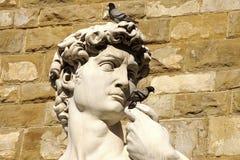 Statue von David, Florenz Lizenzfreies Stockbild