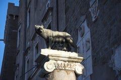 Statue von, die ihr Wolf säugt Romulus und Remus auf dem Capitoline-Hügel in Rom Italien ist Stockbild