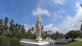 Statue von einem stehenden Buddha auf der Insel stock footage