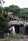 Statue von Elefanten und von Mönchen am Höhlen-Tempel, Dambulla, Sri Lanka, am 25. Januar 2017 Lizenzfreie Stockfotografie