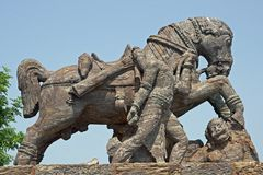 Statue of a War Horse at Konark Temple. Statue of a war horse at the ancient Surya Hindu Temple at Konark, Orissa, India. 13th Century AD Royalty Free Stock Photos