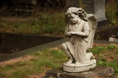Statue of a weeping angel in a cemetery stock images