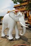 Statue of white elephant. At temple Stock Image