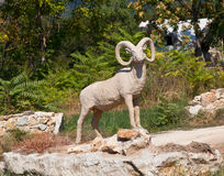 Statue of wild goat. Statue is located near Karlukovo, Bulgaria Royalty Free Stock Image