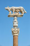 Statue of she-wolf and children in Siena in Italy Stock Photography