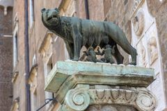 Statue of Wolf with Romulus and Remus on Capitoline hill in city of Rome, Italy. ROME, ITALY - JUNE 23, 2017: Statue of Wolf with Romulus and Remus on Capitoline stock photography