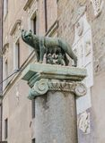Statue of Wolf with Romulus and Remus on Capitoline hill in Rome, Italy royalty free stock images