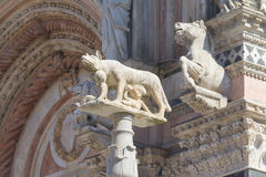 Statue of the She-Wolf of Siena (Italy) Stock Photos