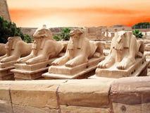 Statuen in einem Ägypten Lizenzfreie Stockfotos