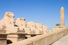 Statues in the ancient temple. Luxor. Egypt Royalty Free Stock Photography