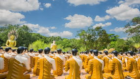 Statues of Buddha stock footage