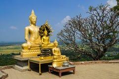 Statues of Buddha at Wat Phra Phutthachai#3. Statues of Buddha at Wat Phra Phutthachai with clear blue sky and plumeria, Saraburi, Thailand stock photo