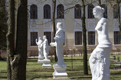 Statues in the courtyard of Ostrog Academy. Copies of antique statues in the courtyard of Ostrog Academy Royalty Free Stock Image