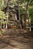 Statues dans la forêt Images stock