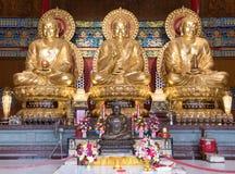 Statues de Bouddha photographie stock libre de droits