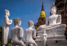 Statues de Bouddha en Thaïlande Images stock