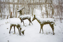 Statues de cerfs communs de mousse dans la neige de l'hiver Photo stock