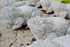Statues de chaux des grenouilles Passage couvert en pierre Grenouilles sur l'allée dans le beau jardin avec des fleurs et des arb Image stock