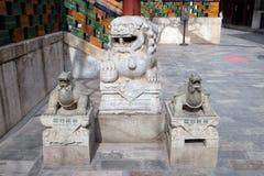 Statues de lion et de tortue dans le temple de Yonghe dans Pékin Photos libres de droits
