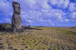 Statues on Easter Island. Stock Images