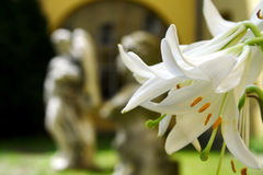 Statues et lis Image stock