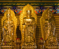 Statues of gods. Statue of the god of religion in China Stock Images