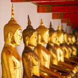 Statues of golden Buddha Stock Image