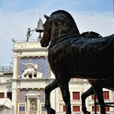 Statues of horses of the  St. Mark's cathedral. Stock Photos