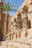 Statues in Karnak temple ( Egypt ) Royalty Free Stock Photo