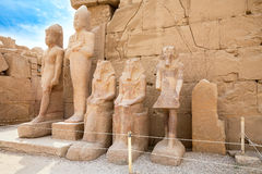 Statues in Karnak Temple. Luxor, Egypt. Statues of Thutmose III, unknown Dynasty 13 king, Sobekhotep and Amenhotep II near north side of seventh pylon. Karnak royalty free stock photos