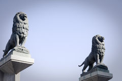 Statues of lions in zaragoza, spain Royalty Free Stock Photography