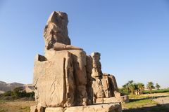 Statues of Memnon royalty free stock photography