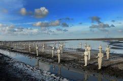 Statues on mud Stock Image