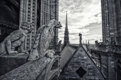 Statues on Notre-Dame in Paris Stock Photos
