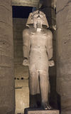 Statues of Ramses II at Luxor Temple at night Stock Images