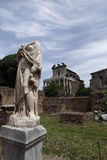 Statues on roman forum Royalty Free Stock Images
