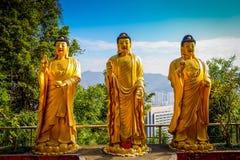 Statues at Ten Thousand Buddhas Monastery in Sha Tin, Hong Kong, China. Impressive golden statues at Ten Thousand Buddhas Monastery in Sha Tin, Hong Kong, China stock image