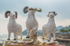 The statues of three celestial rams at Kwun Yam temple Stock Photos