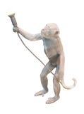 Statuette des Affen mit Glühlampe Lizenzfreie Stockfotos
