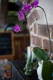 Statuette en céramique de Ganesh, de livres et de pots de fleur avec l'orchidée pourpre sur la commode en bois noire Photo libre de droits