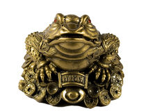 Statuette of frog. With chinks from a bronze Stock Photos