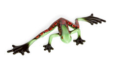 Statuette of a green frog with red spots. Glass figurine green frog with red spots top view isolated on white background Royalty Free Stock Images