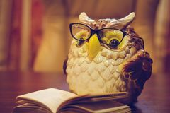 Statuette of an owl in glasses stock images