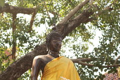 Stature debout de Bouddha photographie stock libre de droits